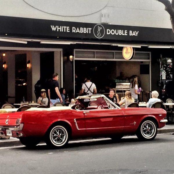 White Rabbit Double Bay - Bay Street